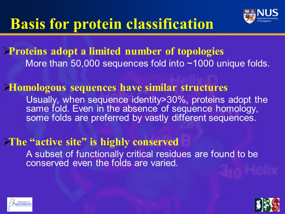  Proteins adopt a limited number of topologies More than 50,000 sequences fold into ~1000 unique folds.