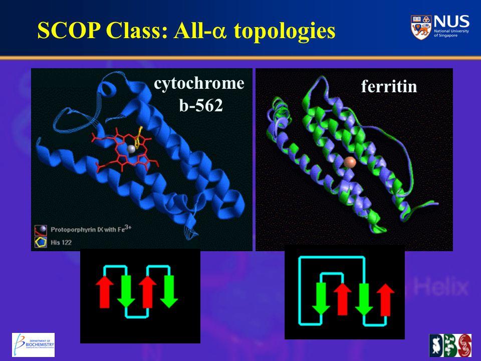 SCOP Class: All-  topologies ferritin cytochrome b-562