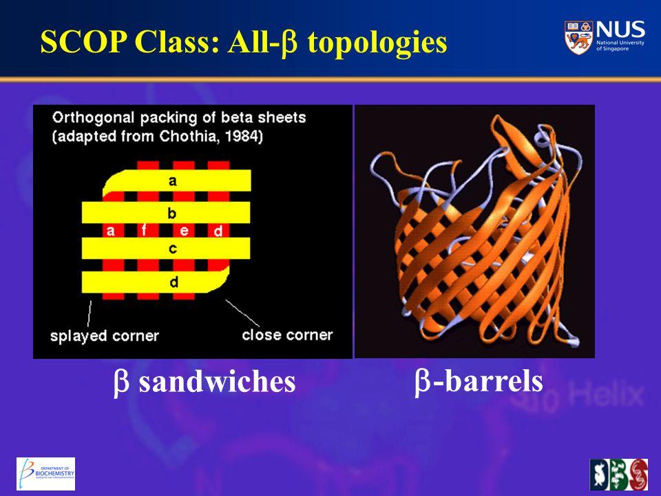 SCOP Class: All-  topologies  sandwiches  -barrels