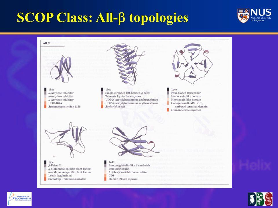 SCOP Class: All-  topologies