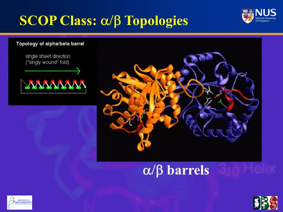 barrels SCOP Class:  Topologies