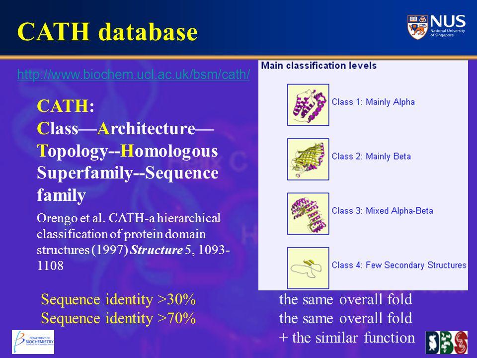 CATH database Orengo et al.