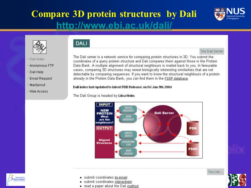 Compare 3D protein structures by Dali http://www.ebi.ac.uk/dali/ http://www.ebi.ac.uk/dali/