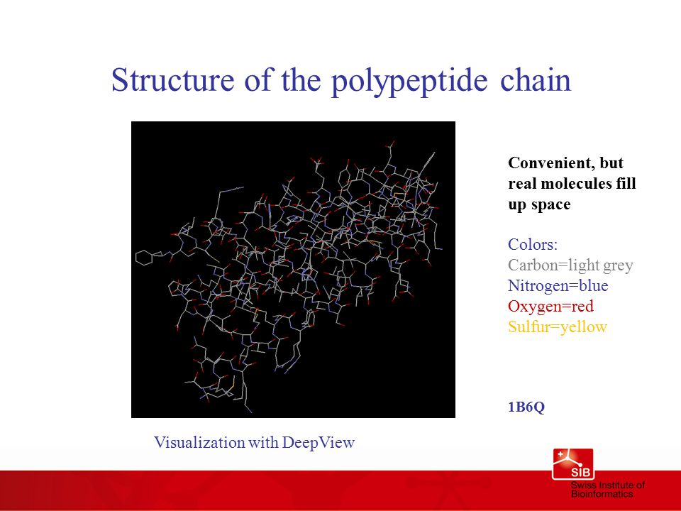 Structure of the polypeptide chain Convenient, but real molecules fill up space Colors: Carbon=light grey Nitrogen=blue Oxygen=red Sulfur=yellow 1B6Q Visualization with DeepView