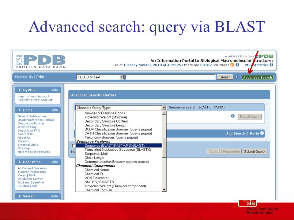 Advanced search: query via BLAST