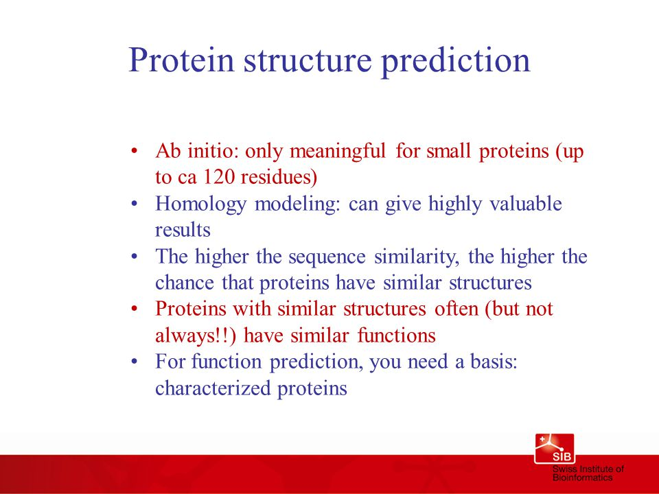 Protein structure prediction Ab initio: only meaningful for small proteins (up to ca 120 residues) Homology modeling: can give highly valuable results The higher the sequence similarity, the higher the chance that proteins have similar structures Proteins with similar structures often (but not always!!) have similar functions For function prediction, you need a basis: characterized proteins