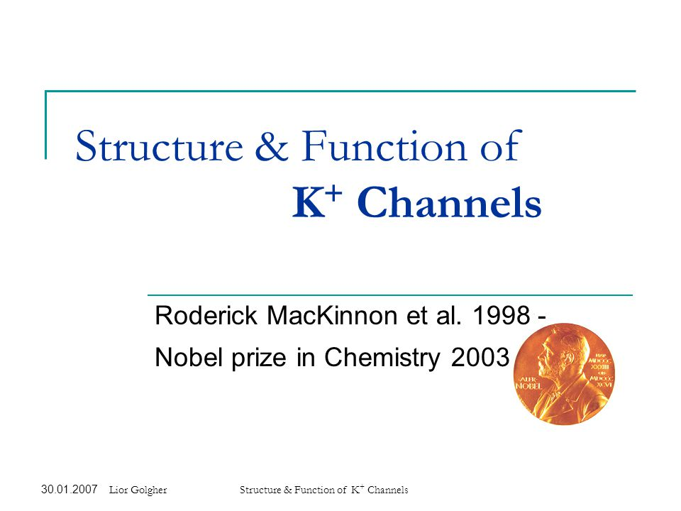 30.01.2007 Structure & Function of K + Channels 12 Beautifully elegant selectivity The fixed filter structure is fine-tuned to accommodate a K + ion.