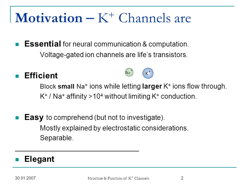 30.01.2007 Structure & Function of K + Channels 3 Agenda Brief historical background 7 min.