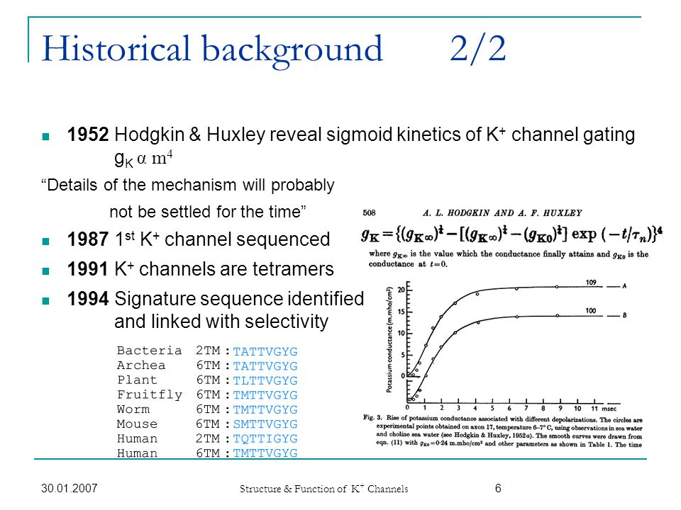 30.01.2007 Structure & Function of K + Channels 27 Hearing is based on K + Channels