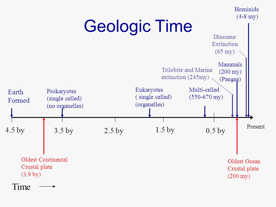 Earth Formed Prokaryotes (single celled) (no organelles) Eukaryotes ( single celled) (organelles) Multi-celled (550-670 my) Hominids (4-8 my) Dinosaur Extinction (65 my) Mammals (200 my) (Pangea) Present 4.5 by 3.5 by2.5 by 1.5 by 0.5 by Time Oldest Ocean Crustal plate (200 my) Oldest Continental Crustal plate (3.9 by) Geologic Time Trilobite and Marine extinction (245my)