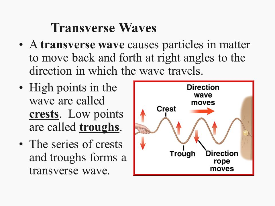Radio Waves and Microwaves The wavelengths of radio waves are greater than about 0.3 meters.