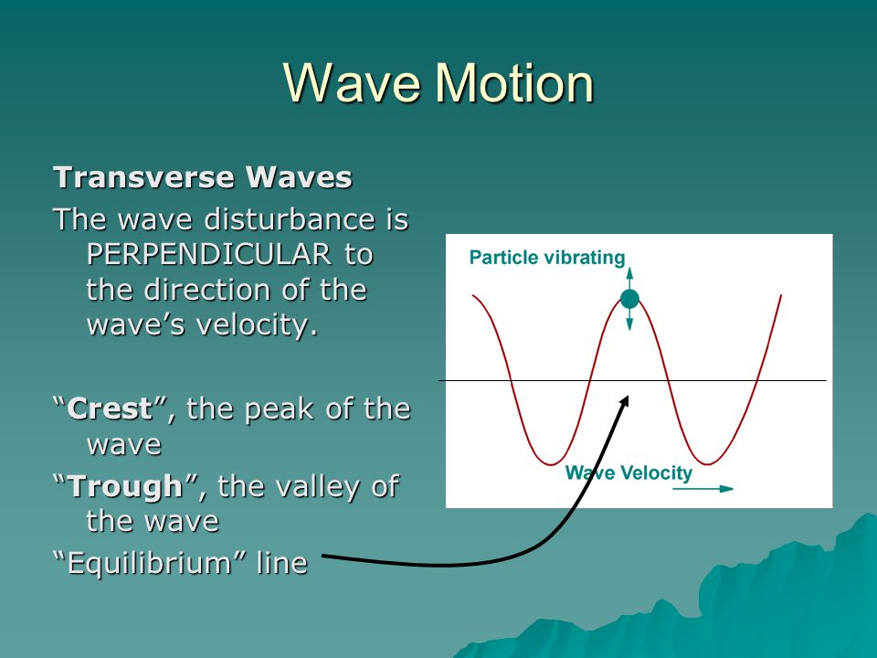 """Wave Motion Transverse Waves The wave disturbance is PERPENDICULAR to the direction of the wave's velocity. """"Crest"""", the peak of the wave """"Trough"""", th"""