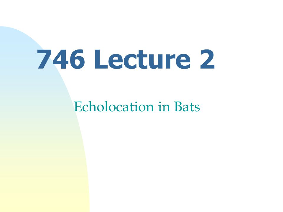 746 Lecture 2 Echolocation in Bats