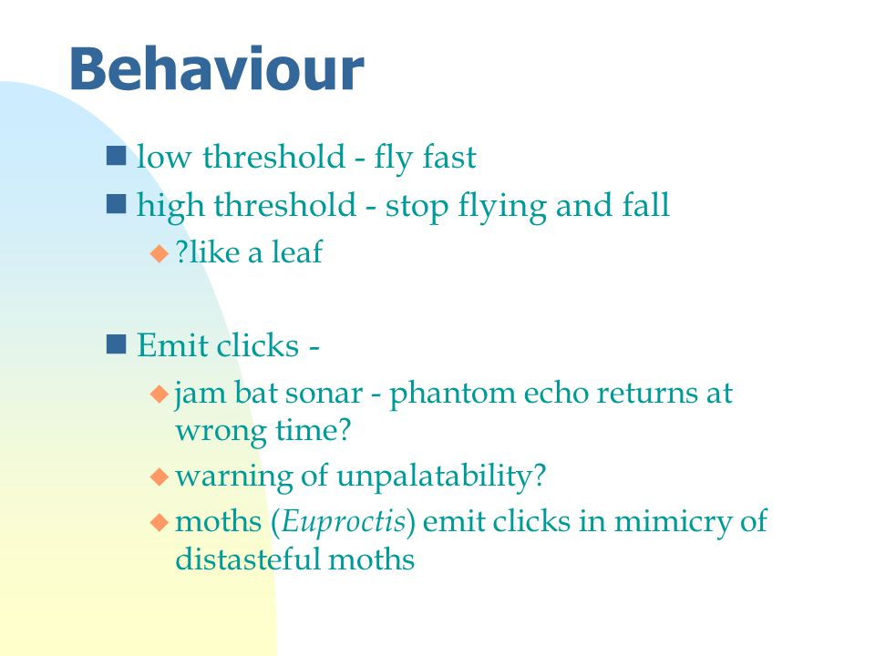 Behaviour nlow threshold - fly fast nhigh threshold - stop flying and fall u like a leaf nEmit clicks - u jam bat sonar - phantom echo returns at wrong time.