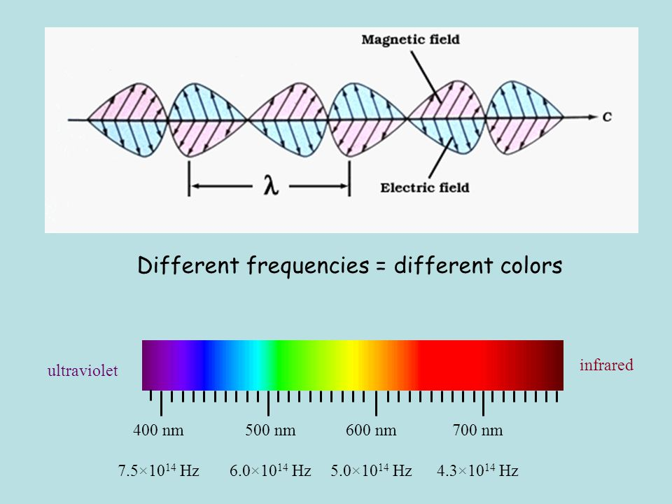What waves do: Echo (reflect) Disperse (speed varies with wavelength) Refract (bend going from one medium to another) Interfere (when two or more waves add) - diffract - beat - resonate