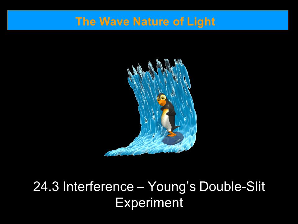 The Wave Nature of Light 24.3 Interference – Young's Double-Slit Experiment