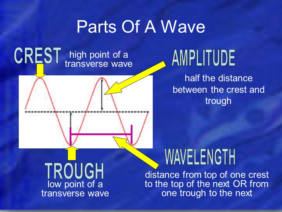 Types Of Waves Compressional (or Longitudinal) Waves Transverse waves