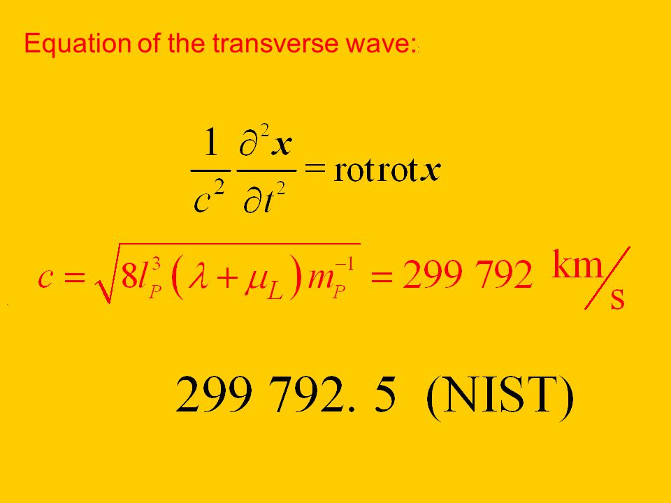 . Equation of the transverse wave: :