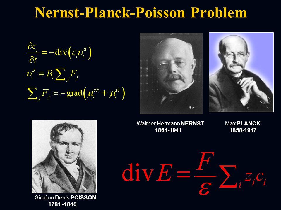 Nernst-Planck-Poisson Problem Siméon Denis POISSON 1781 -1840 1781 -1840 Walther Hermann NERNST 1864-1941 1864-1941 Max PLANCK 1858-1947 1858-1947