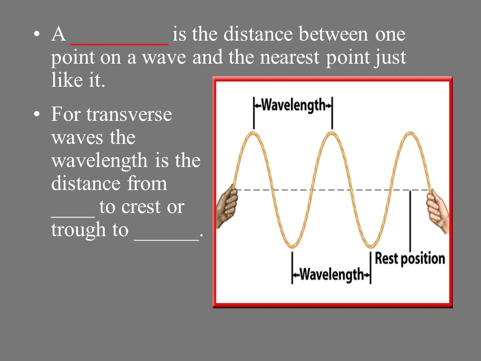 The coils in the region next to a compression are spread apart, or less dense. This less-dense region of a compressional wave is called a ______.