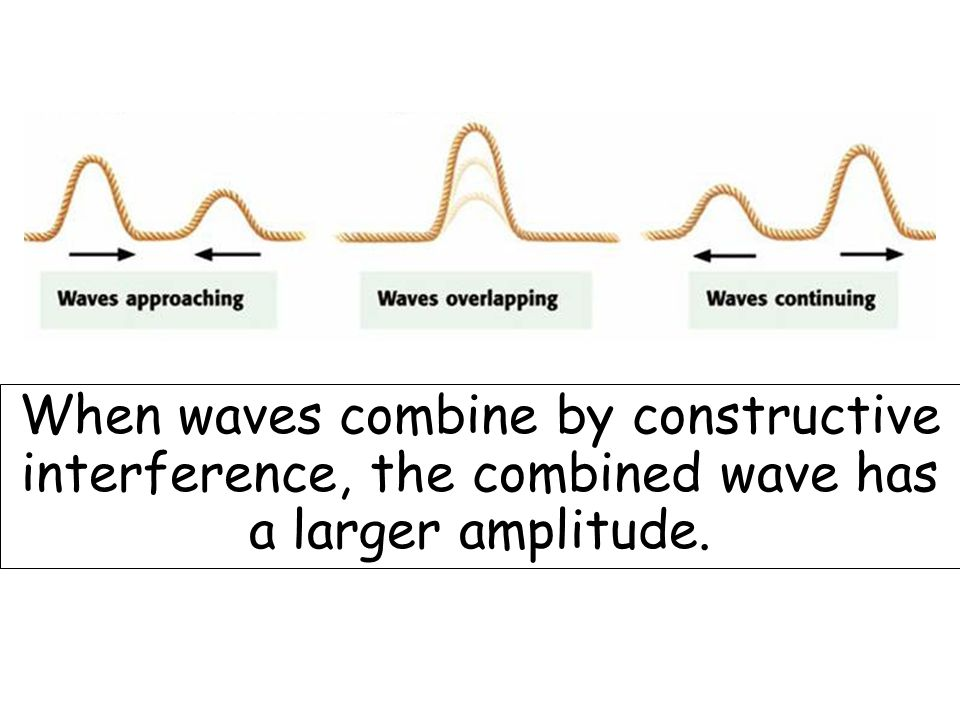 When waves combine by constructive interference, the combined wave has a larger amplitude.