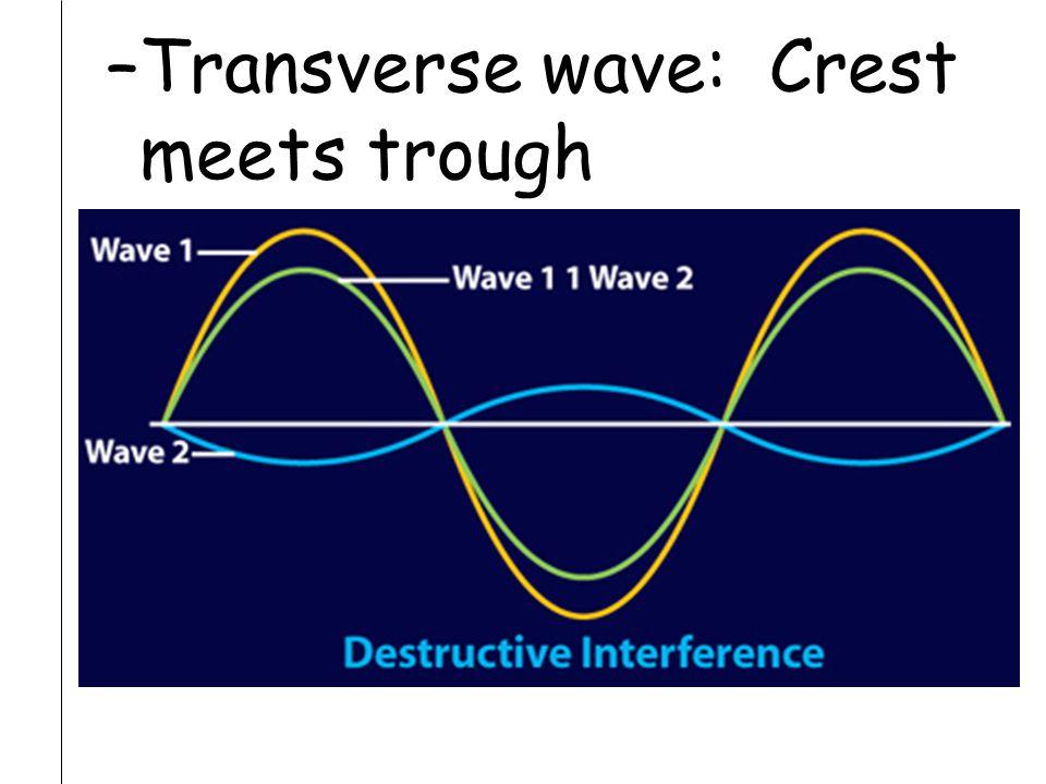 –Transverse wave: Crest meets trough
