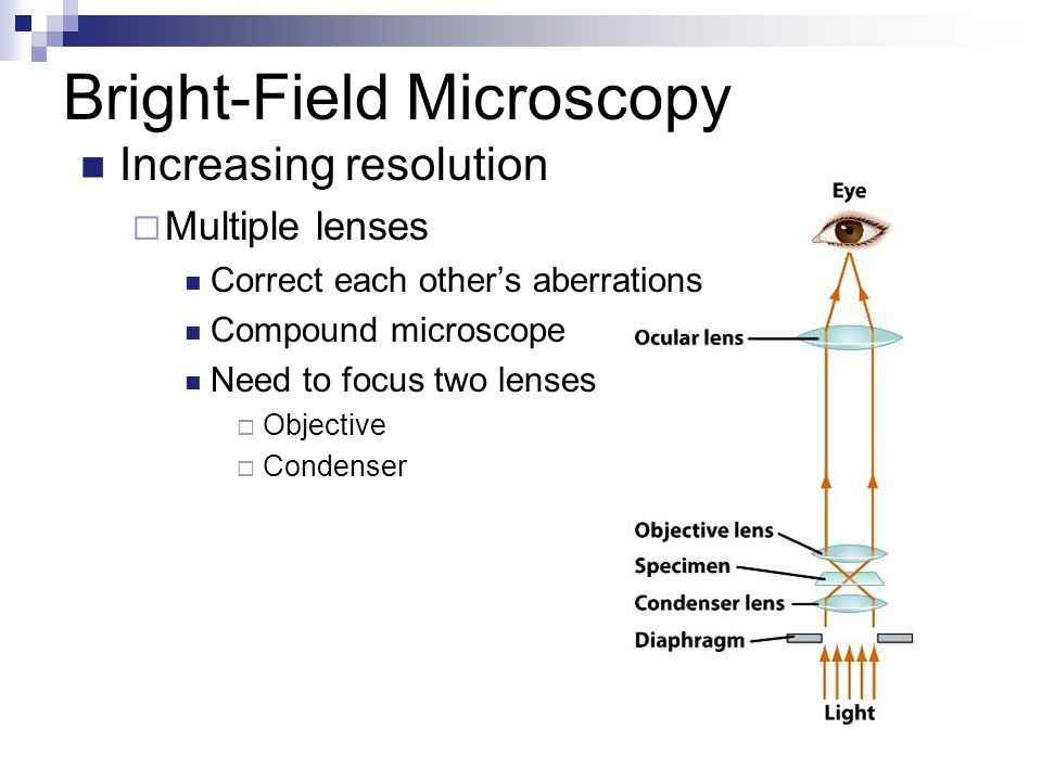 Bright-Field Microscopy Increasing resolution  Multiple lenses Correct each other's aberrations Compound microscope Need to focus two lenses  Objective  Condenser