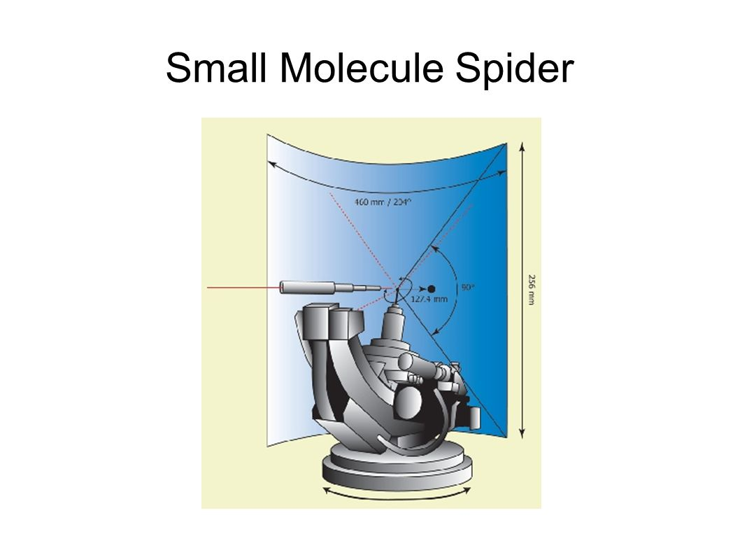 Small Molecule Spider