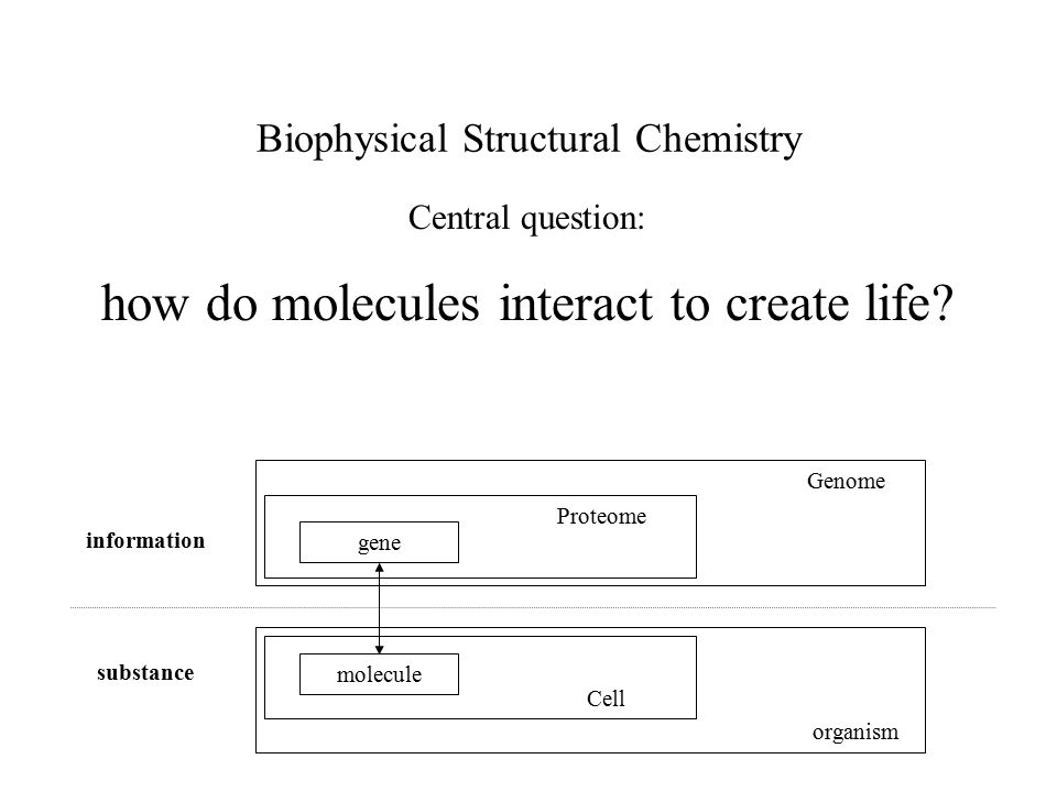 Research in life science ORGANISM physiology CELL cell biology MOLECULES biochemistry / biophysics ATOMS structural biology Theory development Transfection: In vivo studies Extraction: in vitro studies array techniquesgenetics bio-informaticsproteomics Other techniques for identifying genes, proteins and/or ligands Genes, proteins metabolites