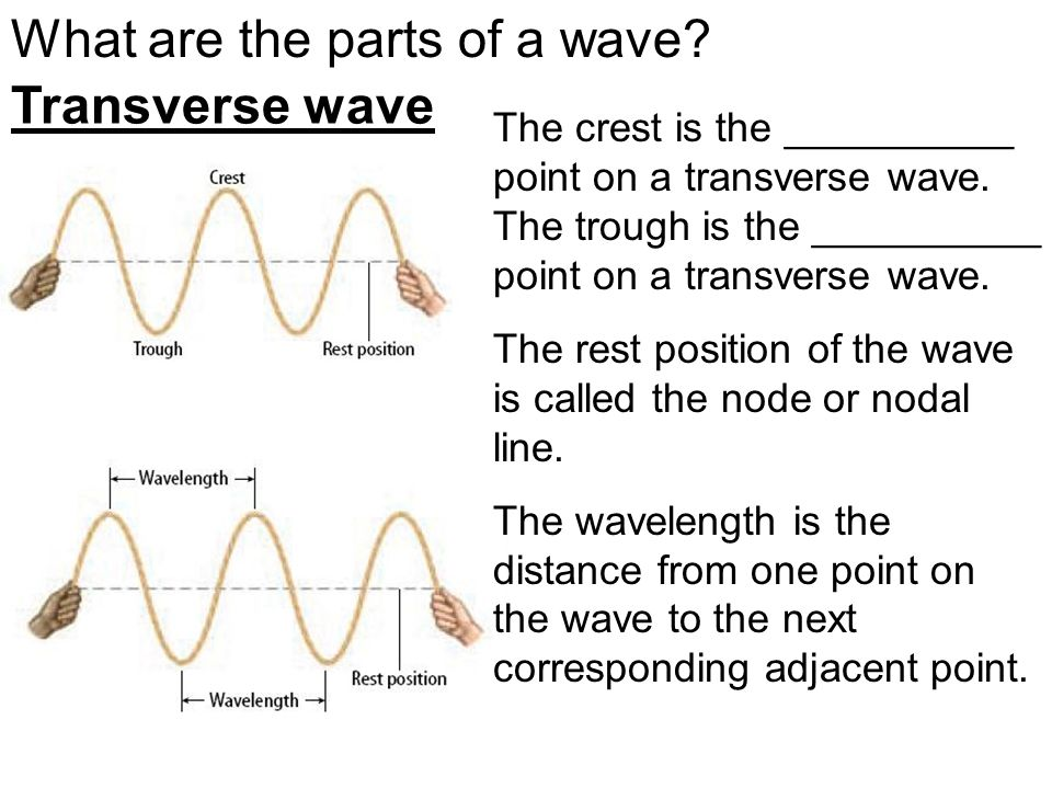 What are the parts of a wave.