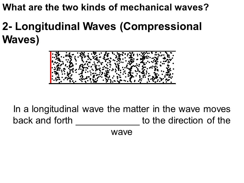What are the two kinds of mechanical waves.