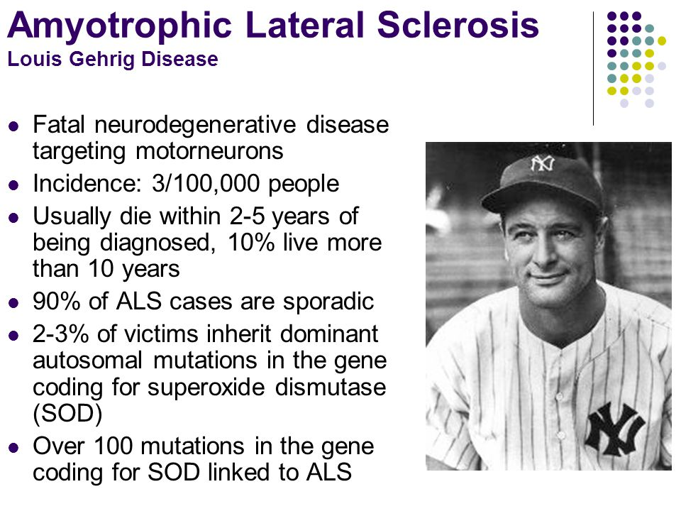 Amyotrophic Lateral Sclerosis Louis Gehrig Disease Fatal neurodegenerative disease targeting motorneurons Incidence: 3/100,000 people Usually die with