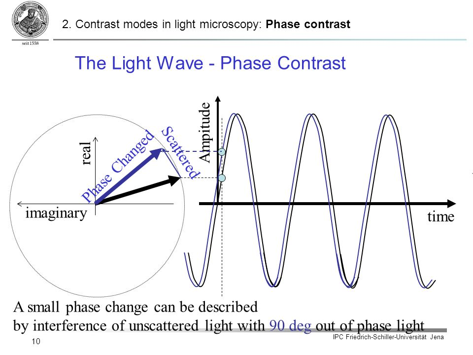 IPC Friedrich-Schiller-Universität Jena 10 The Light Wave - Phase Contrast imaginary real time Ampitude Scattered Phase Changed time A small phase cha