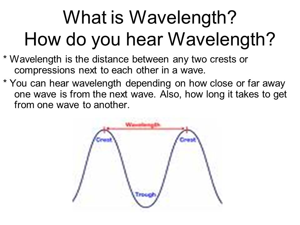 What is Wavelength? How do you hear Wavelength? * Wavelength is the distance between any two crests or compressions next to each other in a wave. * Yo
