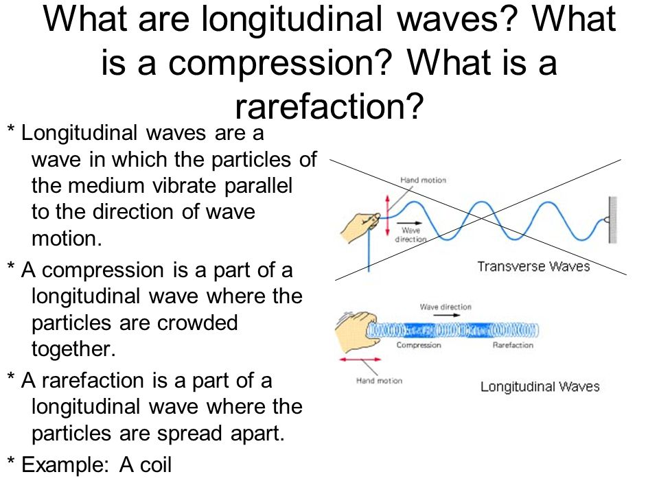 What are longitudinal waves? What is a compression? What is a rarefaction? * Longitudinal waves are a wave in which the particles of the medium vibrat