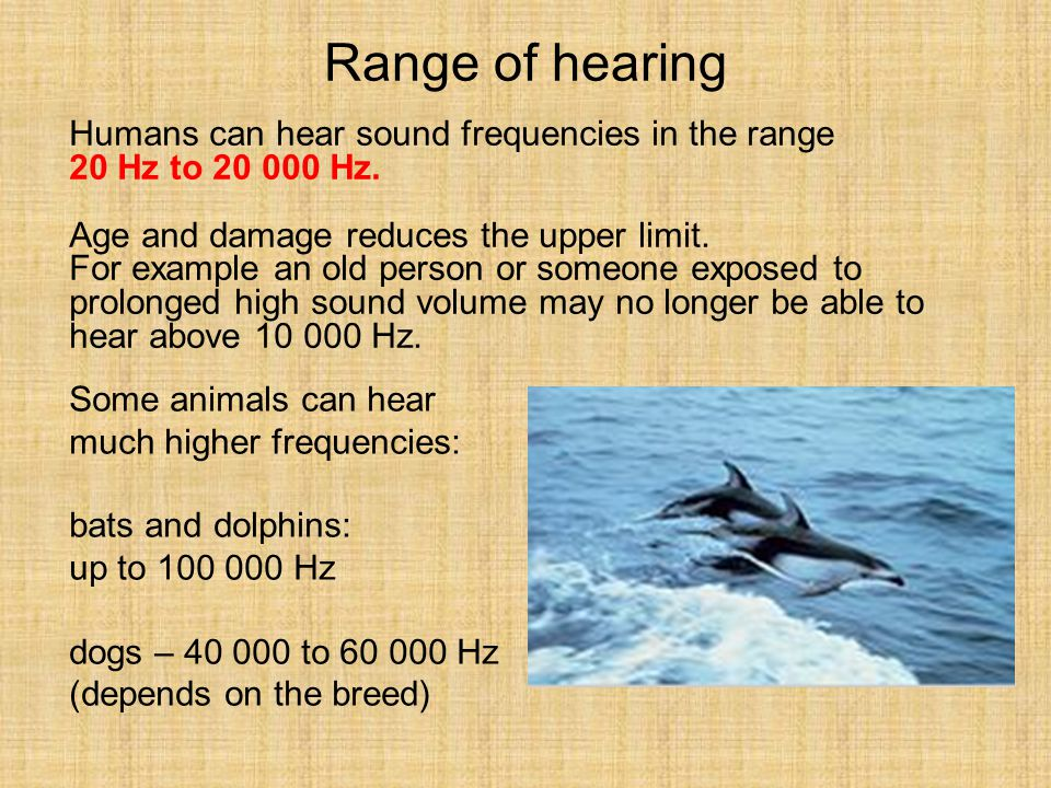 Range of hearing Humans can hear sound frequencies in the range 20 Hz to 20 000 Hz. Age and damage reduces the upper limit. For example an old person