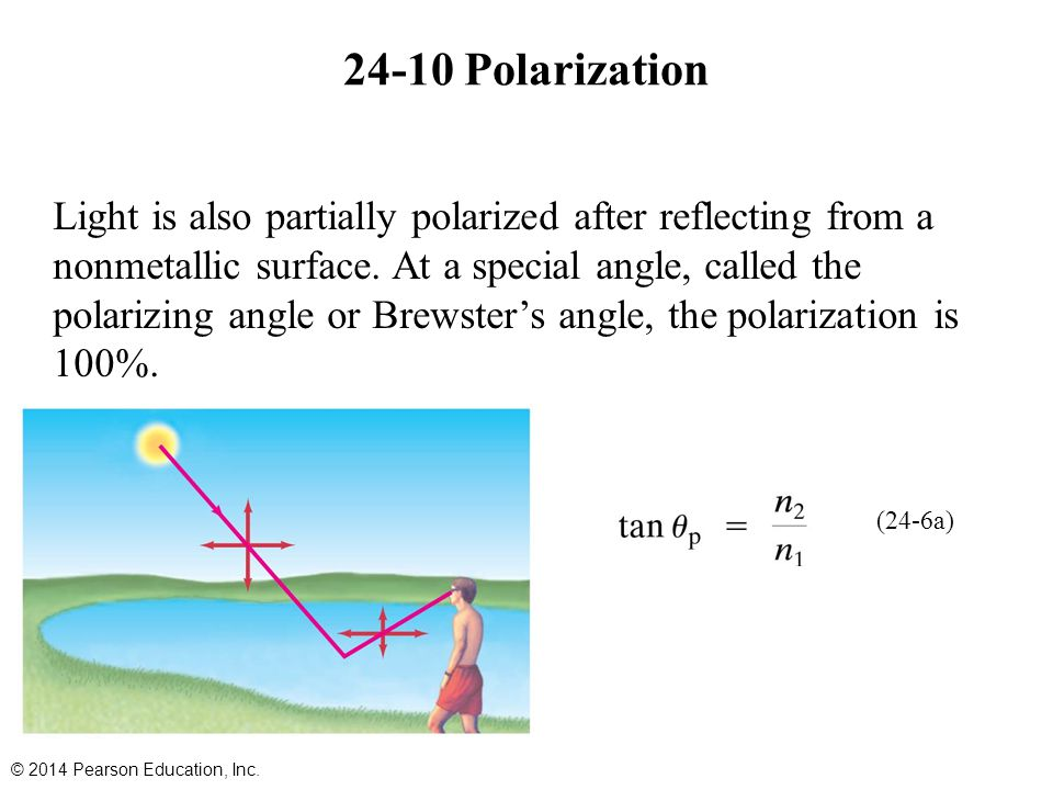 24-10 Polarization Light is also partially polarized after reflecting from a nonmetallic surface. At a special angle, called the polarizing angle or B