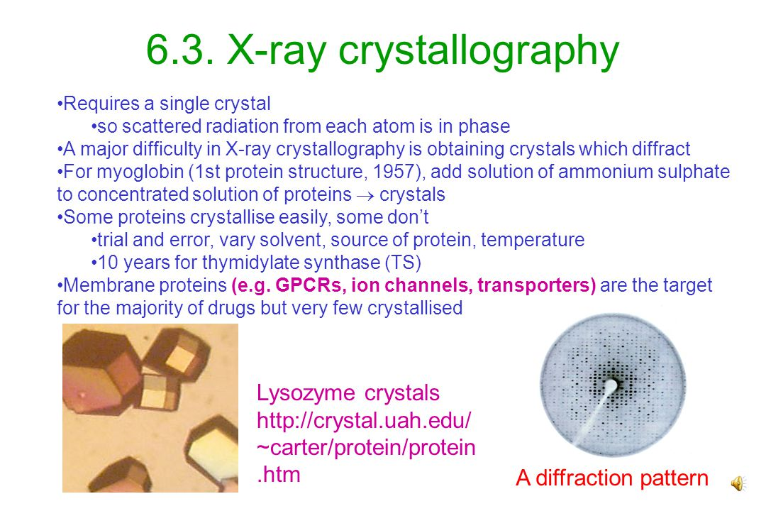 atoms X-rays 6. Protein structure 6.1.