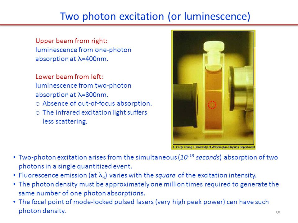 Two-photon excitation arises from the simultaneous (10 -18 seconds) absorption of two photons in a single quantitized event.