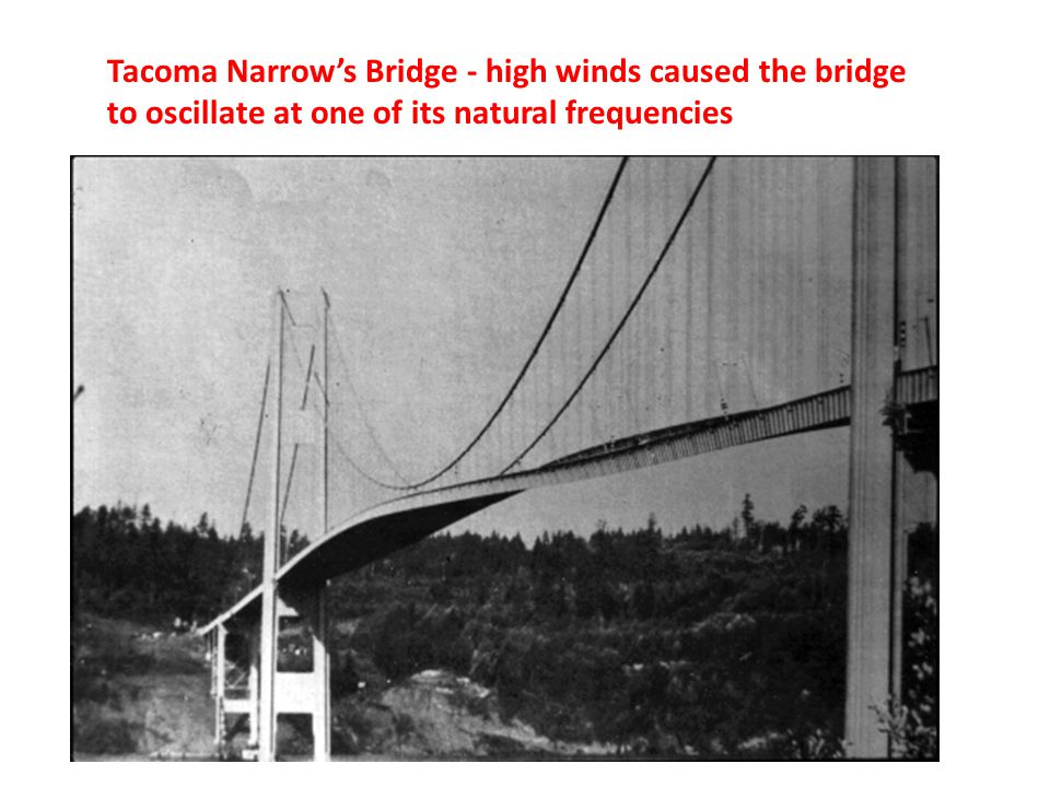 Tacoma Narrow's Bridge - high winds caused the bridge to oscillate at one of its natural frequencies