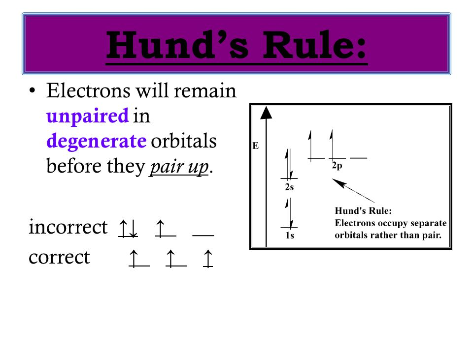 Hund's Rule: Electrons will remain unpaired in degenerate orbitals before they pair up. incorrect ↑↓ ↑ __ correct ↑ ↑ ↑