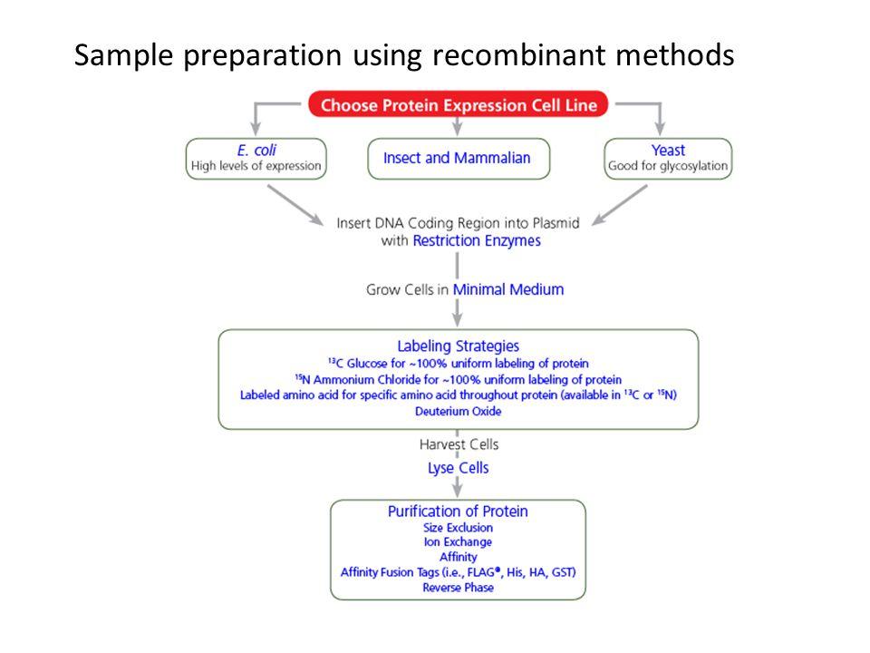 Sample preparation using recombinant methods
