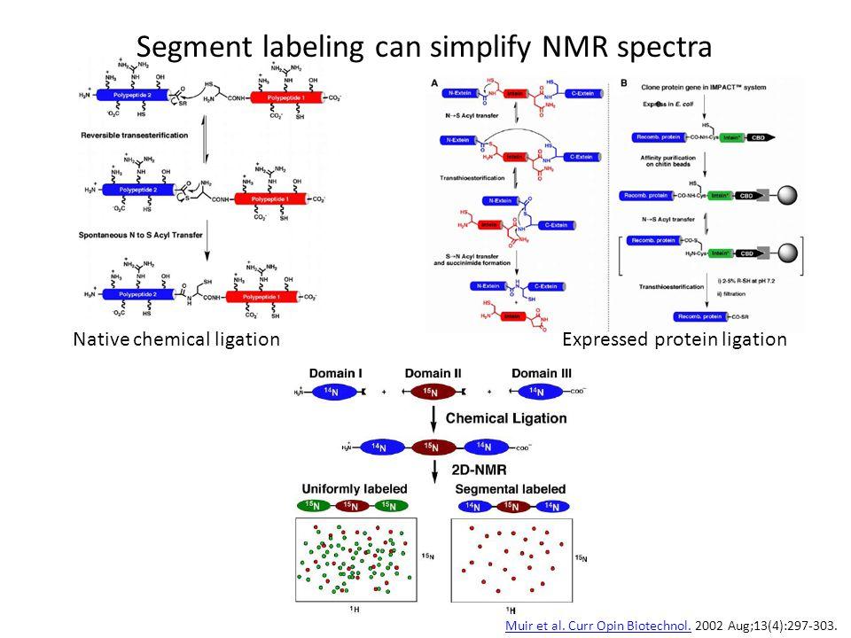Segment labeling can simplify NMR spectra Native chemical ligationExpressed protein ligation Muir et al. Curr Opin Biotechnol.Muir et al. Curr Opin Bi