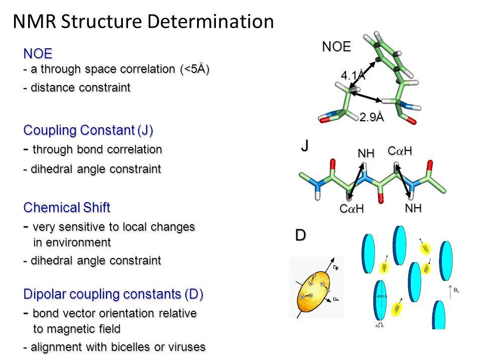 4.1Å 2.9Å NOE CHCHCHCH NH NH CHCHCHCH J NOE - a through space correlation (<5Å) - distance constraint Coupling Constant (J) - through bond cor