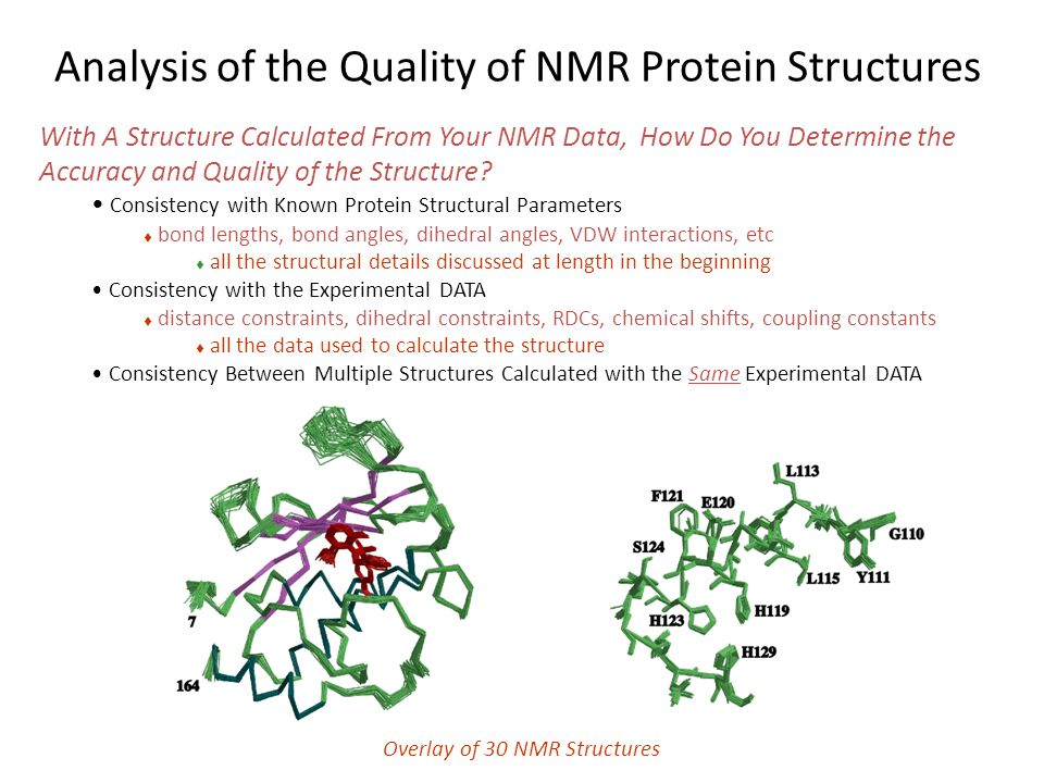 Analysis of the Quality of NMR Protein Structures With A Structure Calculated From Your NMR Data, How Do You Determine the Accuracy and Quality of the