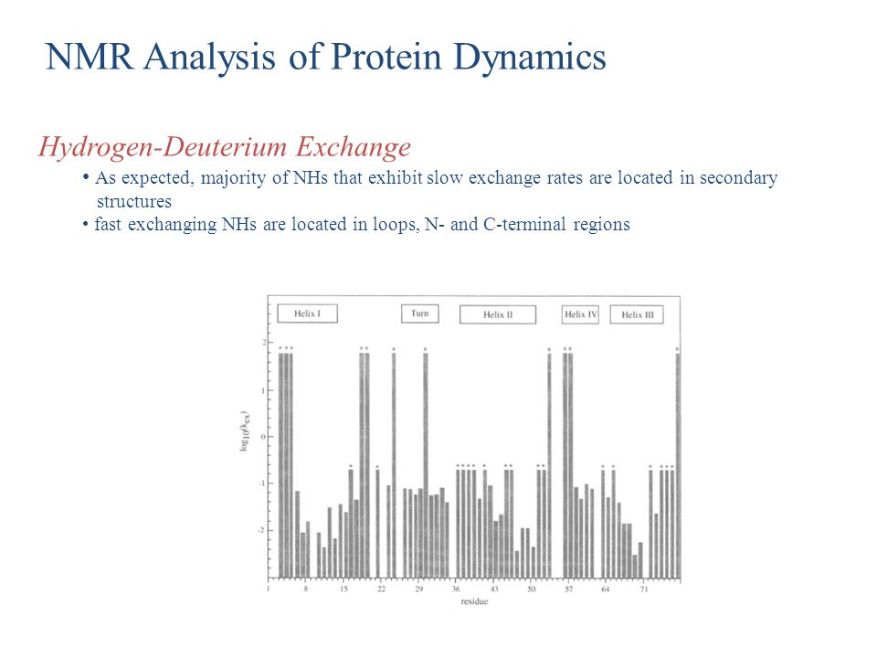 NMR Analysis of Protein Dynamics Hydrogen-Deuterium Exchange As expected, majority of NHs that exhibit slow exchange rates are located in secondary st