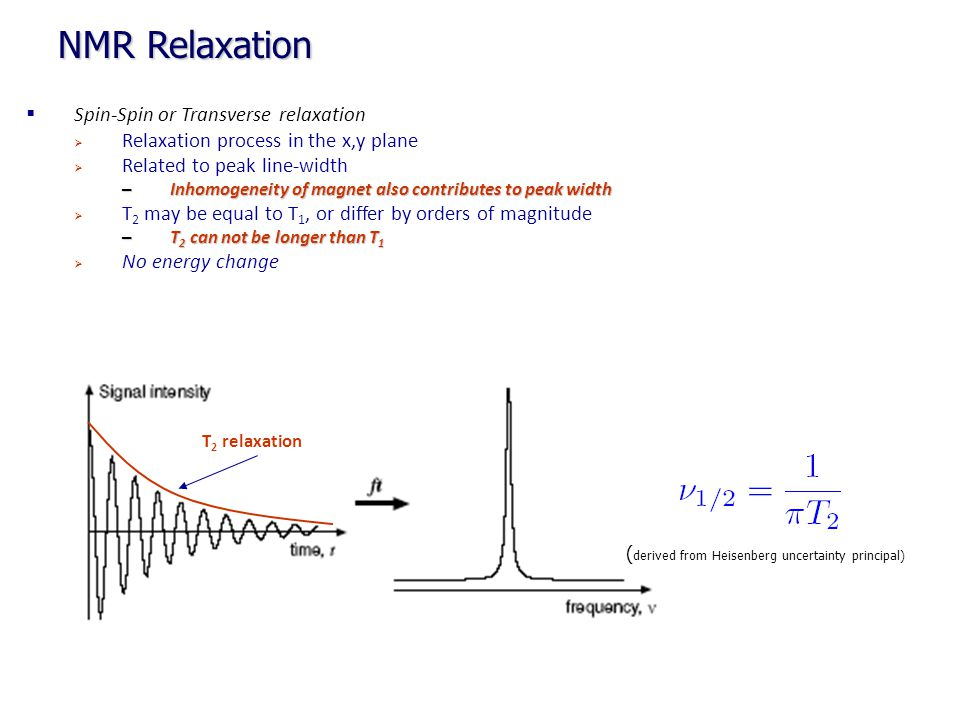 T 2 relaxation NMR Relaxation  Spin-Spin or Transverse relaxation  Relaxation process in the x,y plane  Related to peak line-width – Inhomogeneity