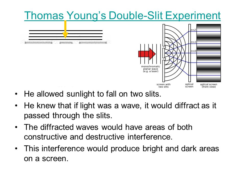 Thomas Young's Double-Slit Experiment He allowed sunlight to fall on two slits. He knew that if light was a wave, it would diffract as it passed throu