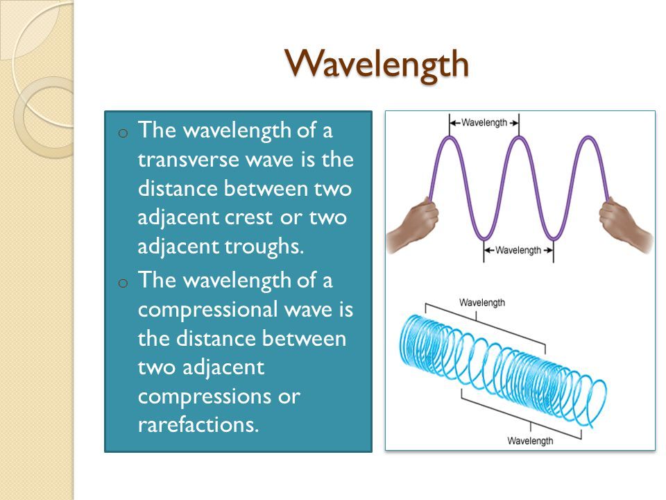 Wavelength o The wavelength of a transverse wave is the distance between two adjacent crest or two adjacent troughs.