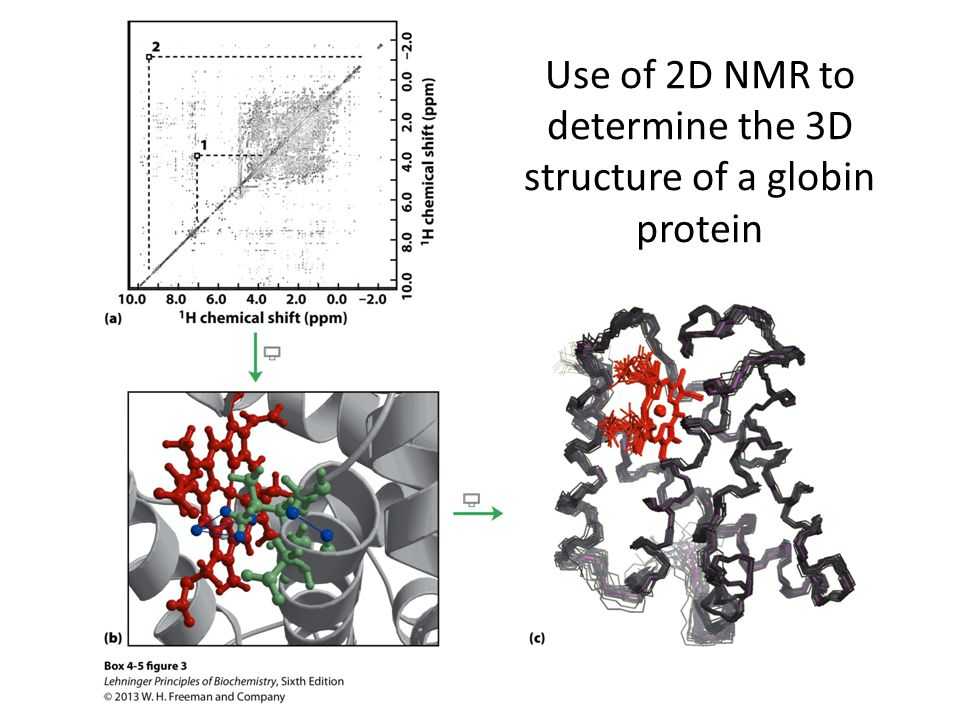 NMR Spectroscopy A major advantage of NMR spectroscopy is that it provides information on proteins in solution, as opposed to those locked in a crystal or bound to a microscope grid, and thus, NMR spectroscopy is the premier method for studying the atomic structures of flexible proteins.